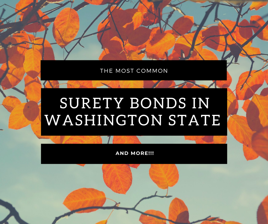 Surety Bonds Washington- What is a Surety Bond for a Washington Auctioneer - Spring Leaves