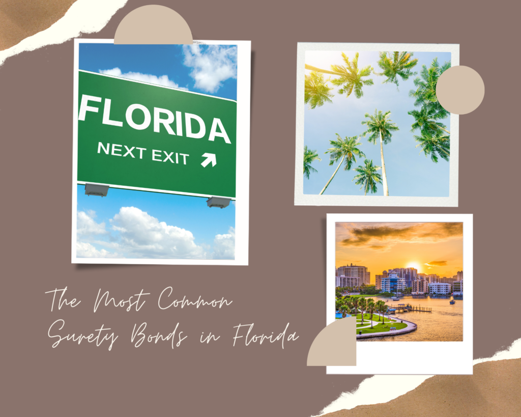 surety bonds in florida - What is a Florida Contractor License Surety Bond - things that represent florida in brown background
